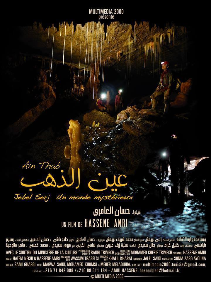 Affiche du film Aïn Dhab
